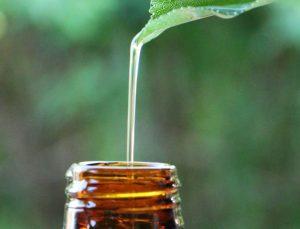Alla scoperta degli oli essenziali alimentari Snep